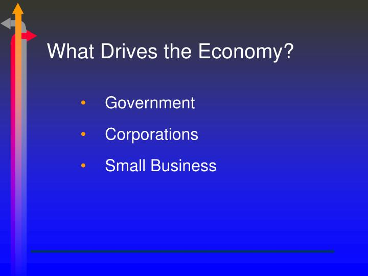 What Drives the Economy?