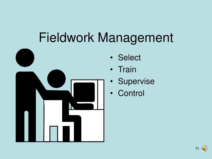 Fieldwork Management