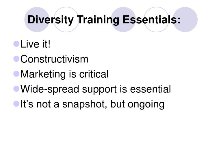 Diversity Training Essentials: