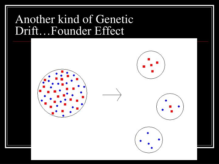 Another kind of Genetic Drift…Founder Effect