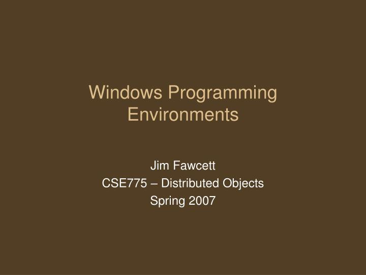 Windows programming environments