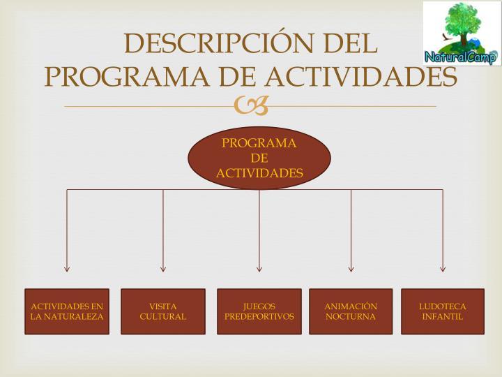 DESCRIPCIÓN DEL PROGRAMA DE ACTIVIDADES