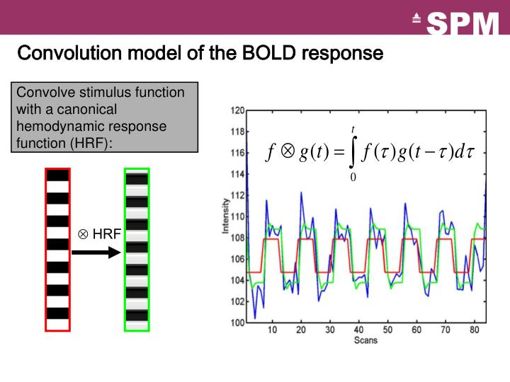 Convolution model of the BOLD response