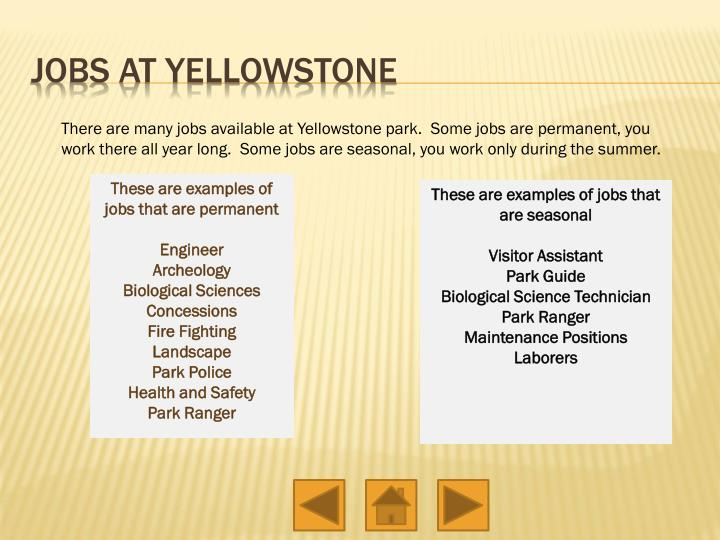 Jobs at Yellowstone