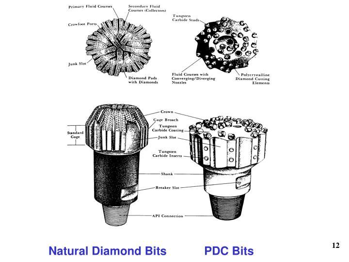 Natural Diamond Bits     PDC Bits