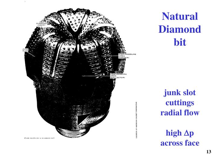 Natural Diamond bit