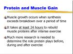 protein and muscle gain