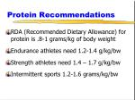 protein recommendations