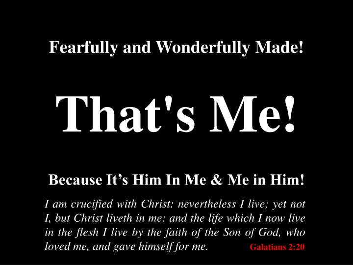Fearfully and Wonderfully Made!