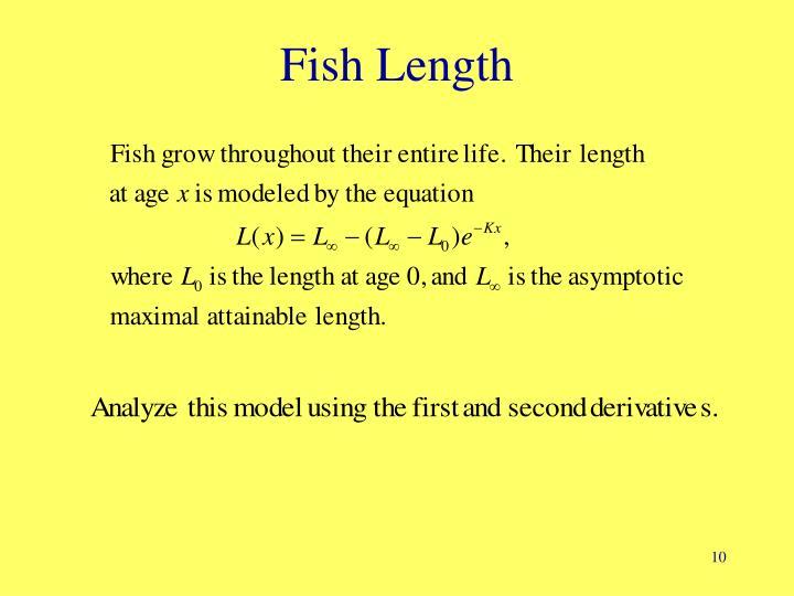 Fish Length