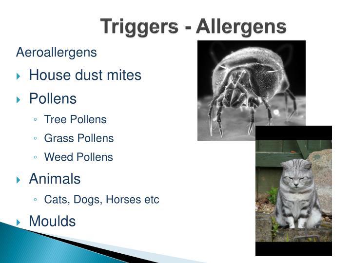 Triggers - Allergens