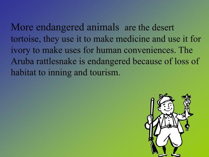More endangered animals