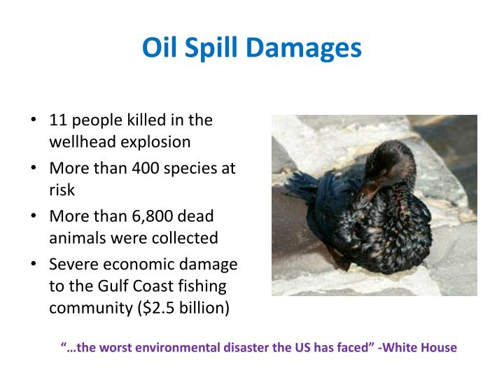 Oil spill damages