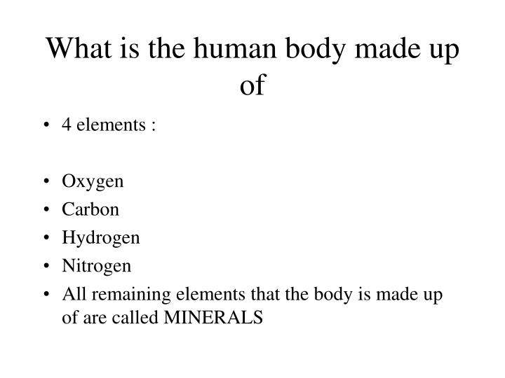 What is the human body made up of