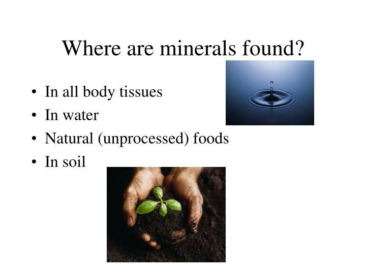 Where are minerals found?