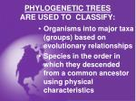 phylogenetic trees are used to classify