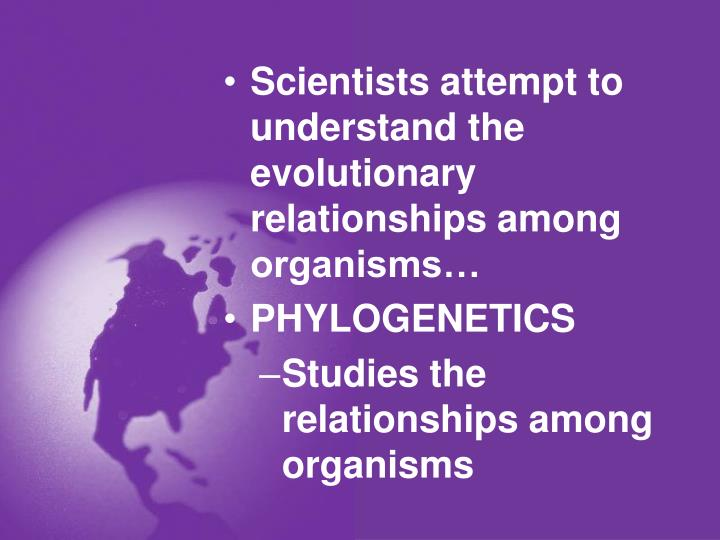 Scientists attempt to understand the evolutionary relationships among organisms…