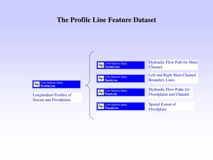 The Profile Line Feature Dataset