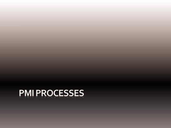 PMI Processes