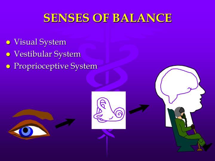 SENSES OF BALANCE