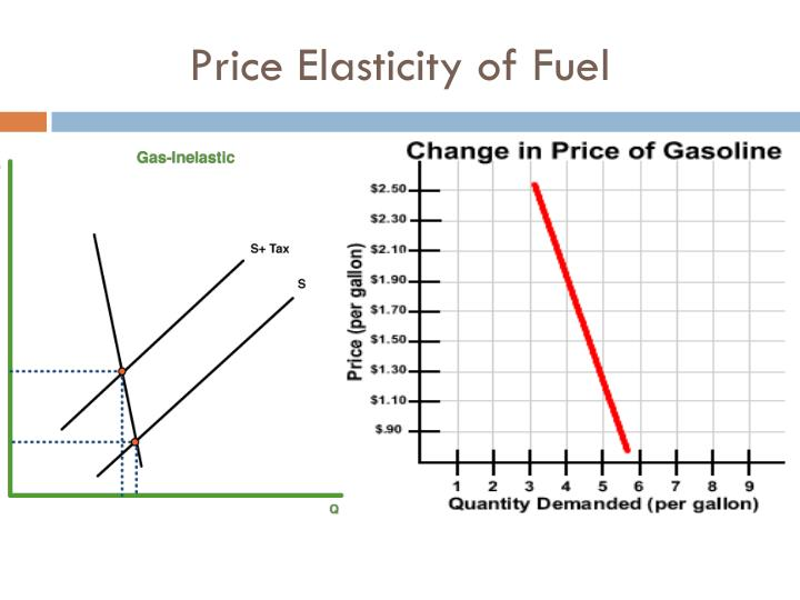 Price Elasticity of Fuel