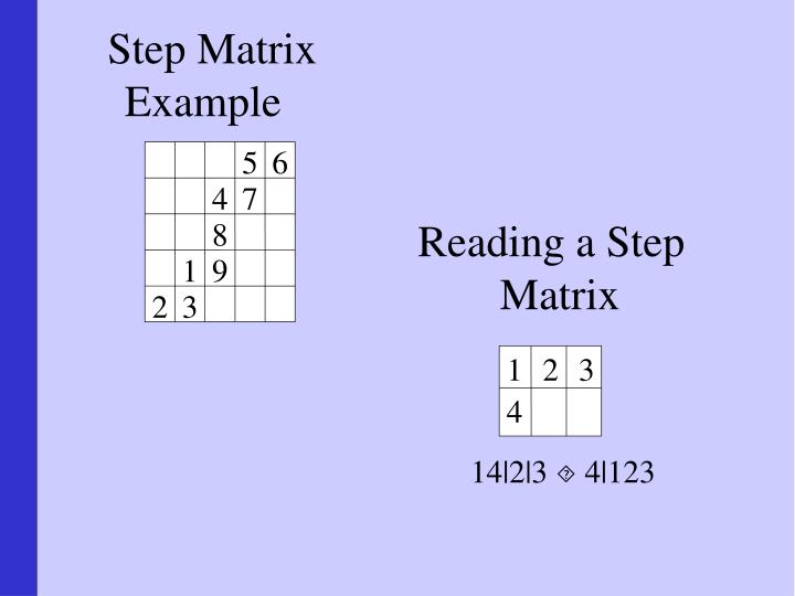 Step Matrix Example