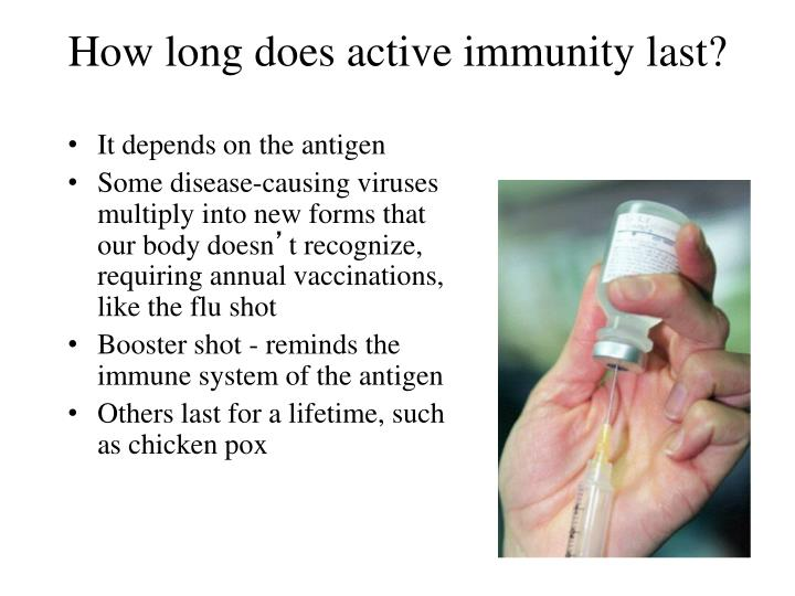 How long does active immunity last?