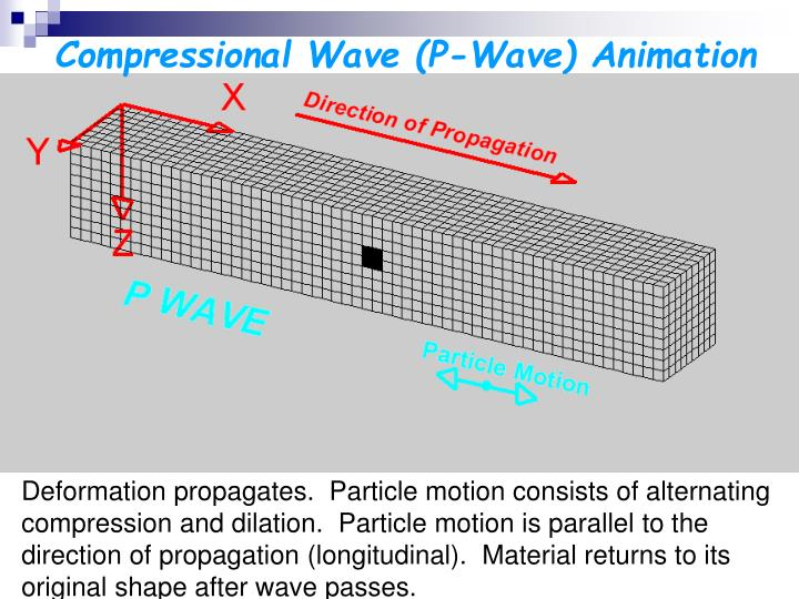 Compressional Wave (P-Wave) Animation