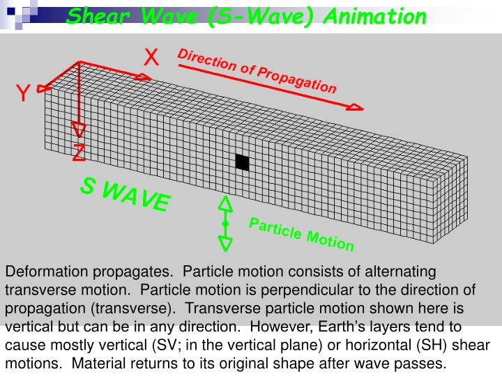 Shear Wave (S-Wave) Animation