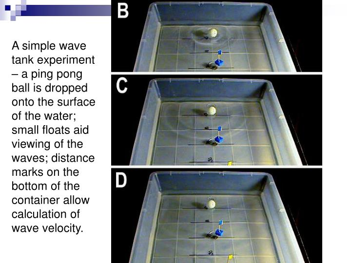 A simple wave tank experiment – a ping pong ball is dropped onto the surface of the water; small floats aid viewing of the waves; distance marks on the bottom of the container allow calculation of wave velocity.