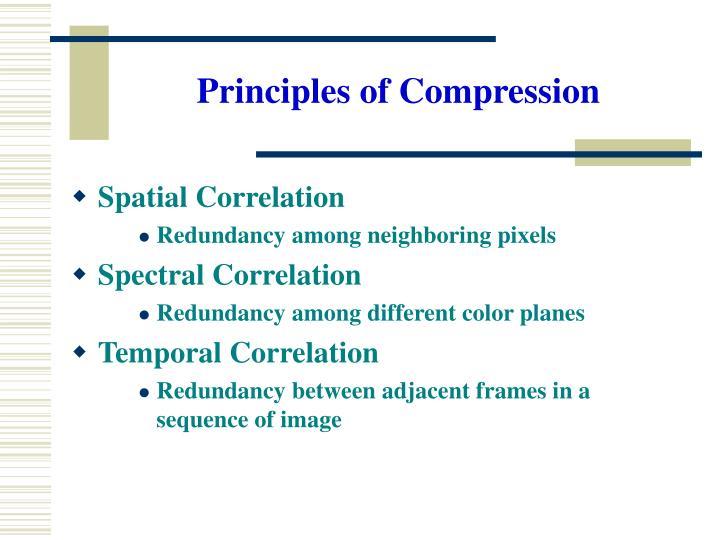 Principles of Compression