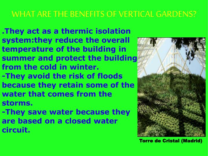 WHAT ARE THE BENEFITS OF VERTICAL GARDENS?
