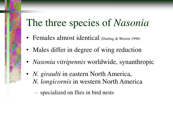 The three species of