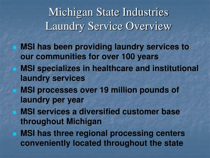 Laundry service industry essay
