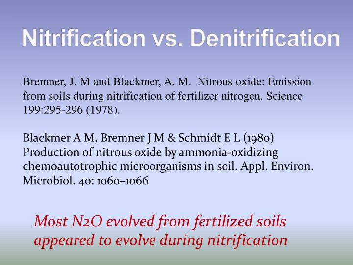 Nitrification vs. Denitrification