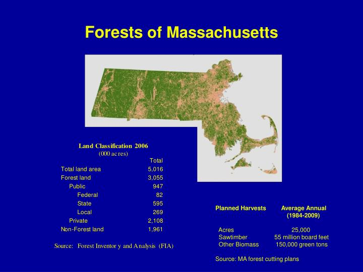 Forests of massachusetts