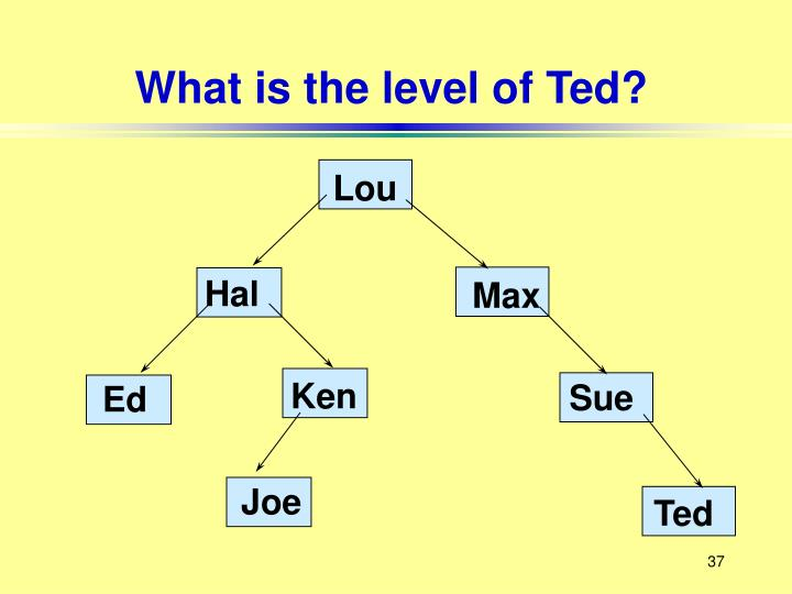 What is the level of Ted?