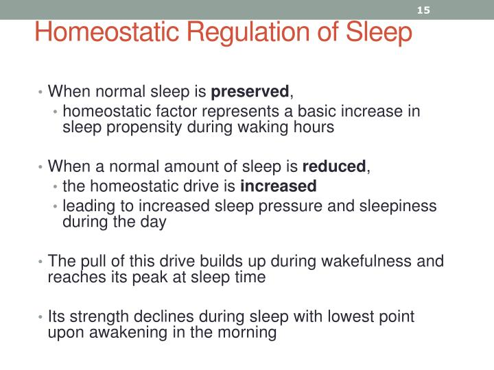 Homeostatic Regulation of Sleep