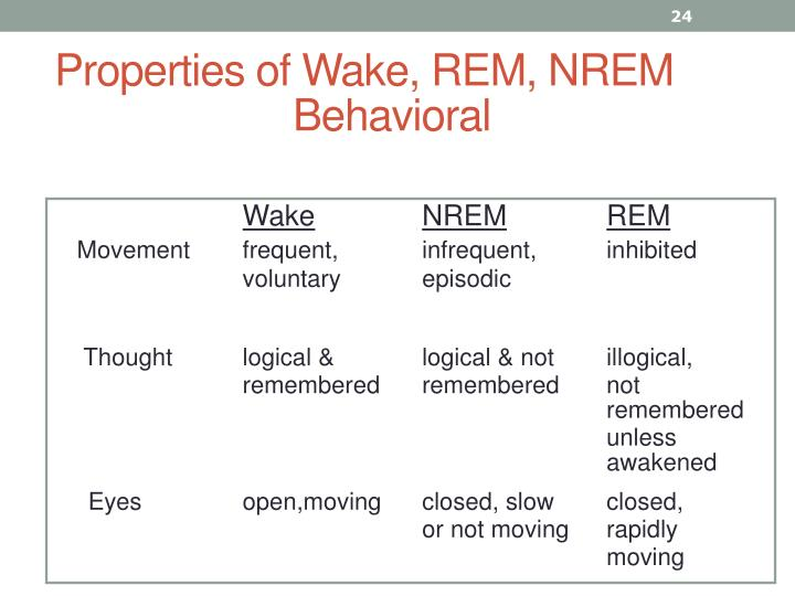 Properties of Wake, REM, NREM Behavioral