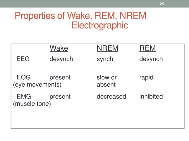 Properties of Wake, REM, NREM