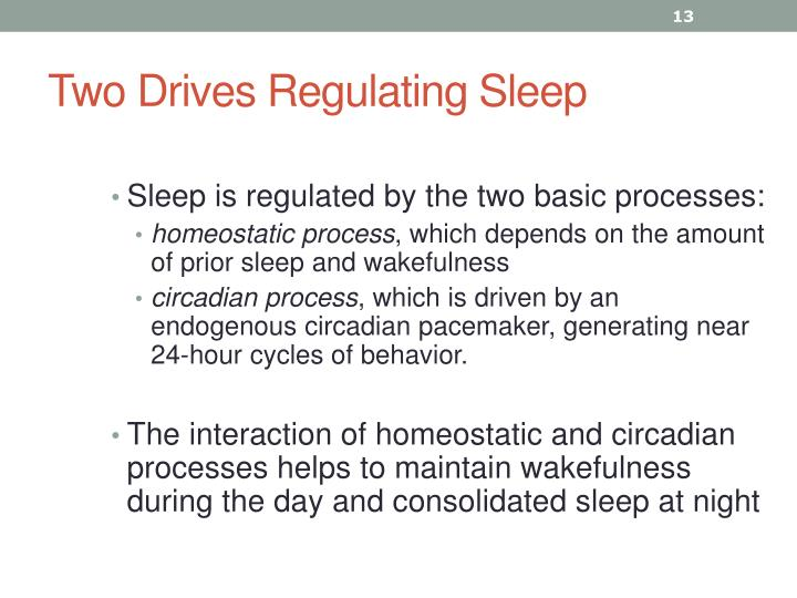 Two Drives Regulating Sleep