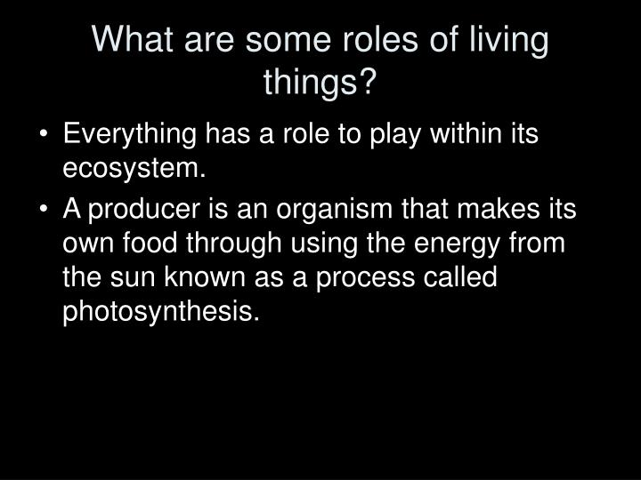 Organism That Makes Its Own Food Using Photosynthesis