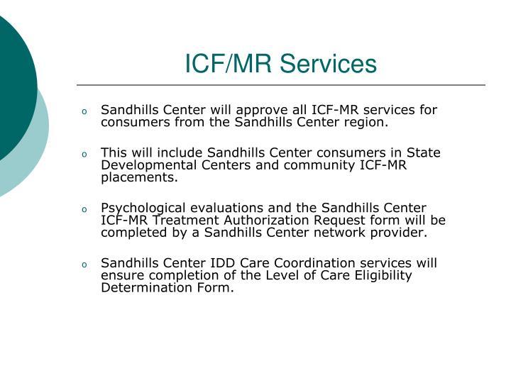 ICF/MR Services