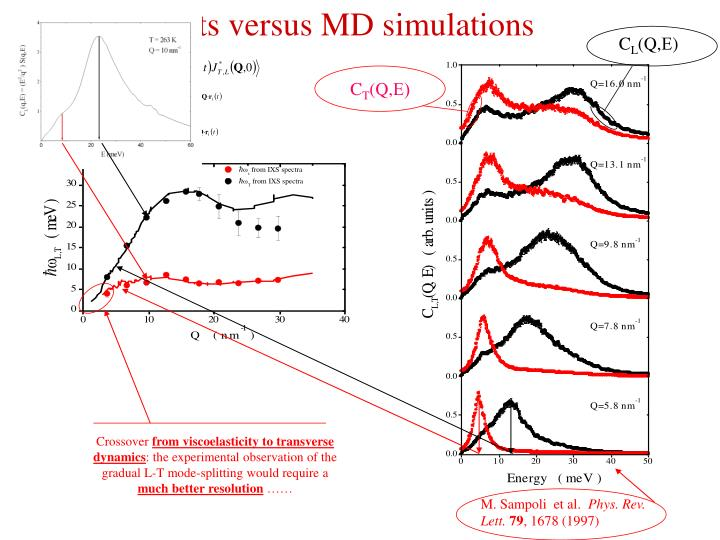 IXS results versus MD simulations