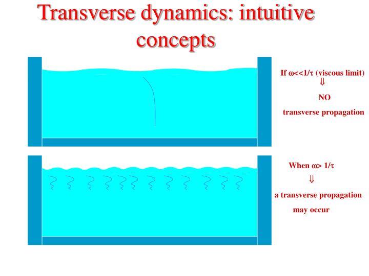 Transverse dynamics: intuitive concepts