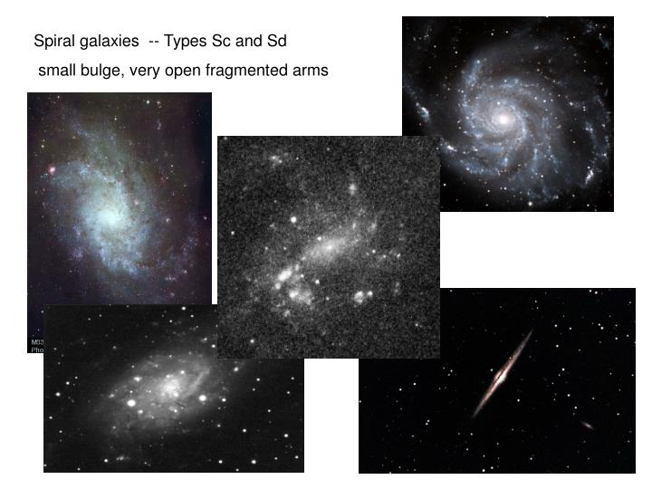 Spiral galaxies  -- Types Sc and Sd