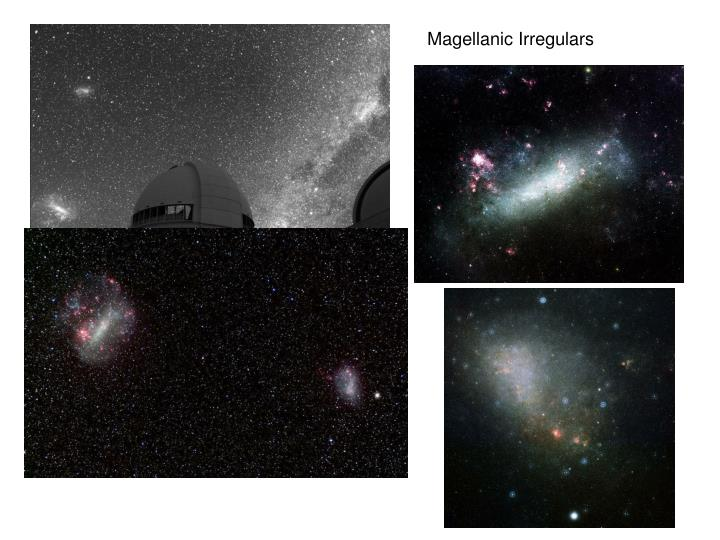 Magellanic Irregulars