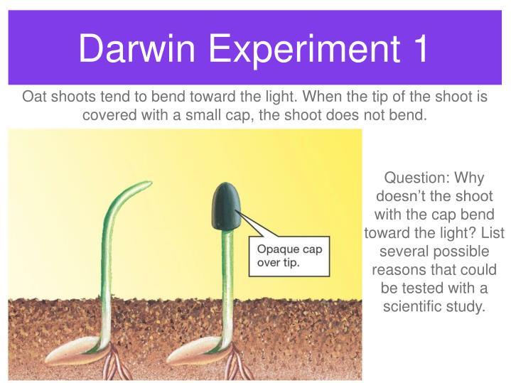 Darwin Experiment 1
