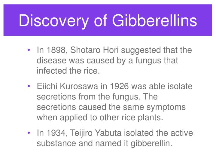 Discovery of Gibberellins