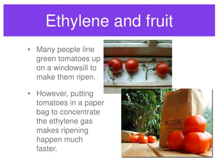 Ethylene and fruit